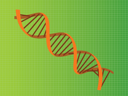 dna double helix: dna strand double helix orange illustration vector illustration Illustration