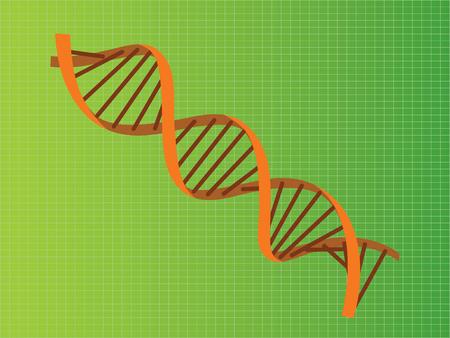 dna strand double helix orange illustration vector illustration Illustration