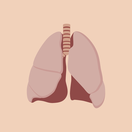 pulmonology: lungs isolated with orange background vector illustration Illustration