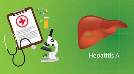 hepatitis vaccination: hepatitis a in liver with medical report microscope medicine vector illustration