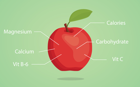 granny smith apple: apple nutrition illustration with list of nutritions detail vector Illustration