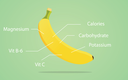 picked: banana nutrition illustration with list of nutritions detail vector Illustration