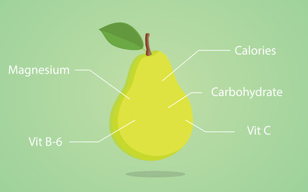 pear nutrition illustration with list of nutritions detail vector