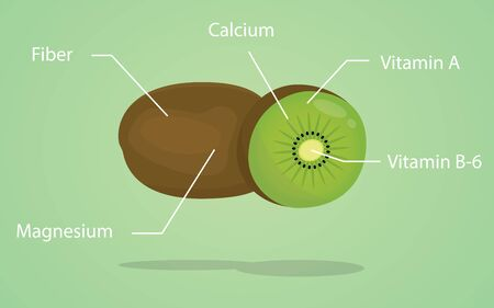 explanation: kiwi nutrition explanation with flat style vector illustration Illustration