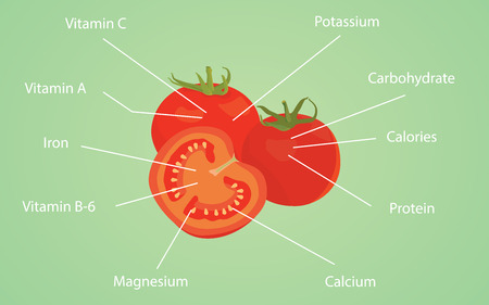 nutrient: tomato tomatoes nutrition nutrient data information vitamin calories vector graphic illustration