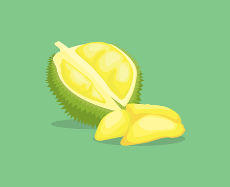 unpleasant: king fruit kingfruit single isolated object with vector graphic illustration