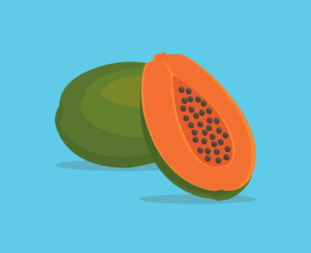 grope: papaya single isolated object with vector graphic illustration