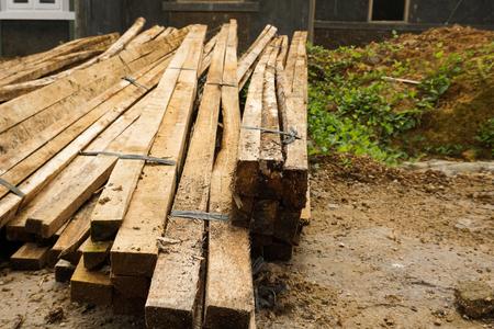 pájaro carpintero: un montículo de tablón de madera utilizado especialmente en suelos de la foto de construcción y tomada en Bogor Indonesia