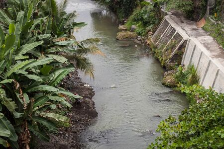 a river with banana tree leaf on the side photo in jogja indonesia