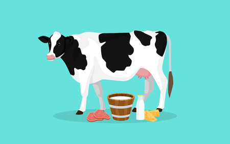 cow farm production with meat milk and cheese vector graphic illustration