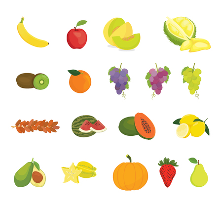 fruit collection with various kind of fruits and color variant - vector illustration 일러스트