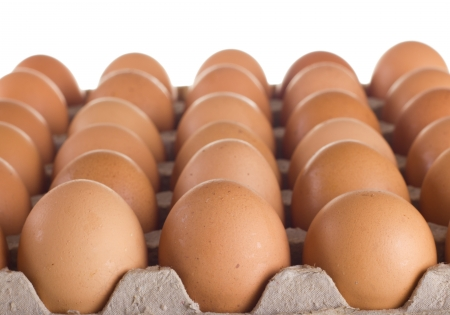 egg box: Carton of fresh brown eggs
