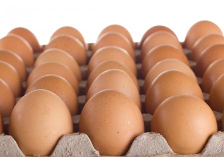 carton: Carton of fresh brown eggs