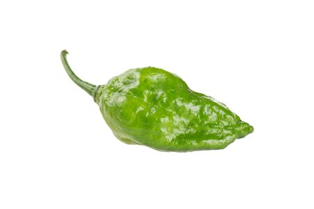 hottest: World hottest Bhut Jolokia chili pepper or the Naga Morich Stock Photo