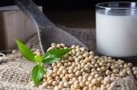 soya: soy milk with soy beans