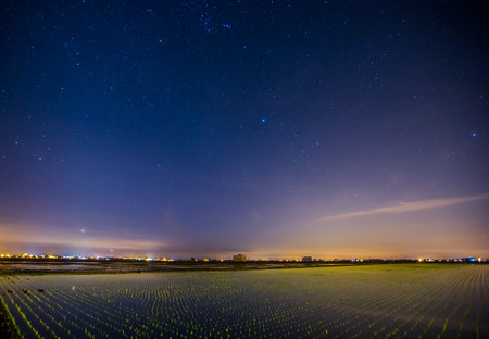 Nightscape at a paddy field photo