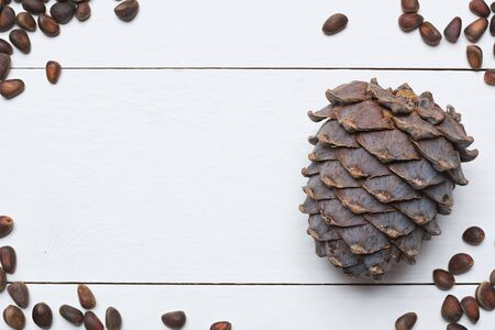 siberian pine: Siberian pine nuts and cone on white wooden table with copy space