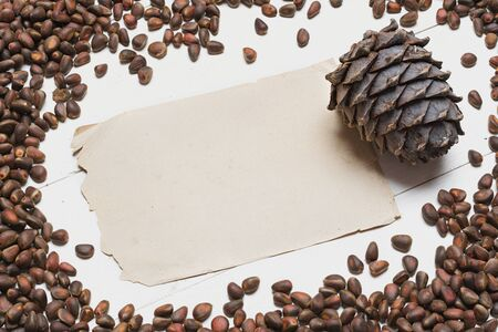 siberian pine: Siberian pine nuts and vintage paper sheet on white wooden table background