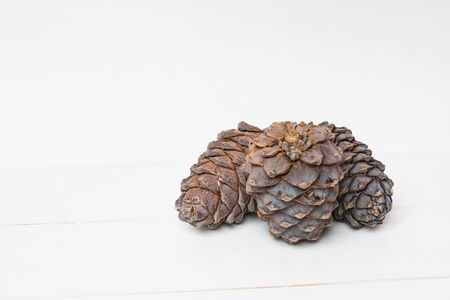 siberian pine: Siberian pine cons on white wooden table background