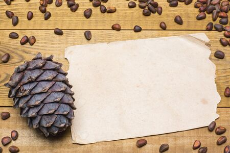 siberian pine: Siberian pine nuts and vintage paper sheet on wooden table background Stock Photo