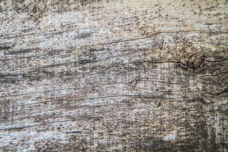 Wooden plank in a close up - background