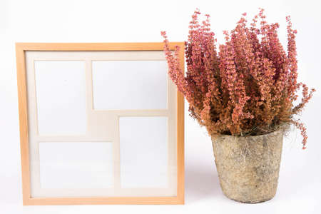 Blank picture frame and a Heather plant on a white background