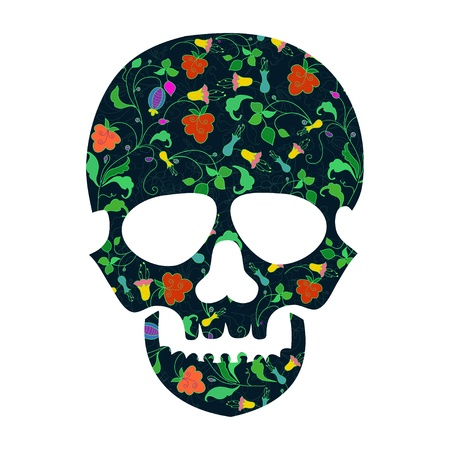 dia de los muertos: Day of The Dead  Skull with floral ornament Illustration
