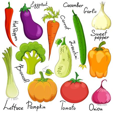 vegetable cartoon: historieta divertida vegetales aisladas sobre fondo blanco