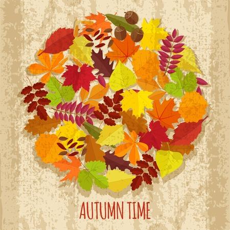 chokeberry: set of autumn leaves Illustration