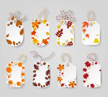 broun: Autumn seasonal sale label. Autumn tags decorated yellow,broun and red leaves. Illustration