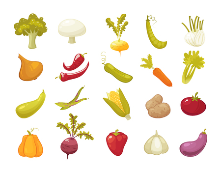 Ecological farming production classical vegetables icons set . Retro style cartoon vector illustration. Farm products isolated on white background Illustration