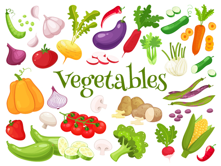 Set of fresh vegetables. Raw vegetables with sliced isolated cartoon style icons with pepper, eggplant, garlic, mushroom,courgette,tomato onion,cucumber,pumpkin vector illustration