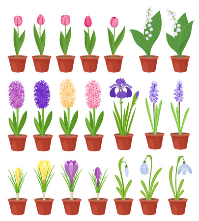 Spring flowers in flower pots. Irises, lilies of valley, tulips, narcissuses, crocuses, snowdrops and other primroses. Garden design icons isolated on white background. Cartoon style vector illustration Çizim