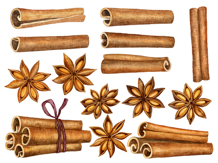 Cinnamon and anise stars set isolated on white background. Kitchen herbs and spices collection. Traditional christmas spices. Watercolor illustration