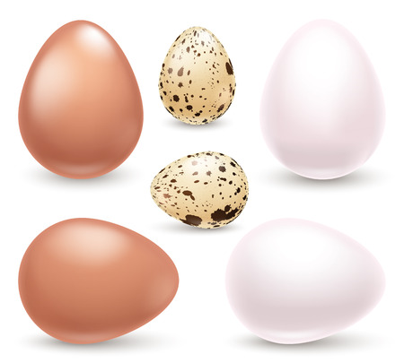 Set of realistic eggs on white background. Easter collection. Vector illustration. Vettoriali