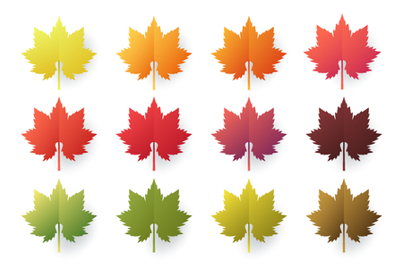 Colorful autumn leaves set isolated on white background. Paper cut 3d flat style, vector illustration.