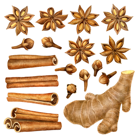 Spices raw material for cooking and baking.Mulled wine ingredients cinnamon, anise, raisins, ginger ,cloves isolated on white background.  illustration.