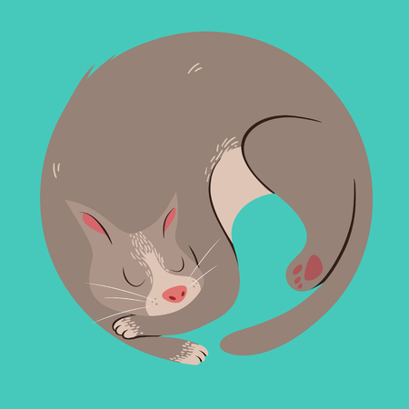 Cute Sleeping Curled Up Cat Vector Illustration
