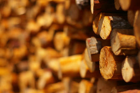stack of firewood: Stack firewood Stock Photo