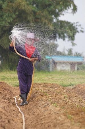 De moestuinman geeft water
