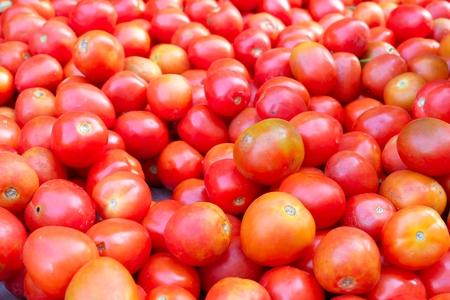 Verse tomaten Stockfoto