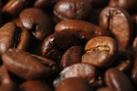 coffee beans Stock Photo - 12227521