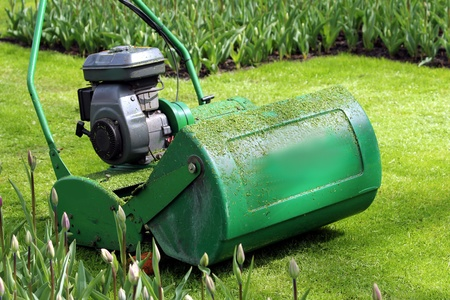 lawn mower in the green photo