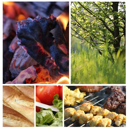 beautiful barbecue collage 2 Stock Photo - 13488783