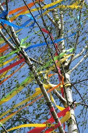 midsummer pole: maypole