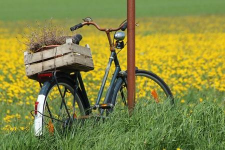platteland fiets Stockfoto