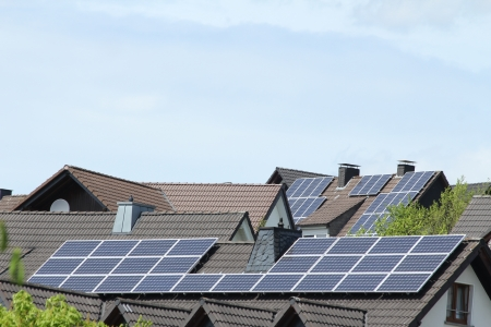 solar plants roofs