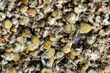 dried chamomile flowers photo