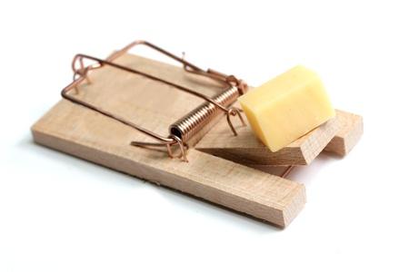 piege souris: pi�ge � souris avec du fromage Banque d'images