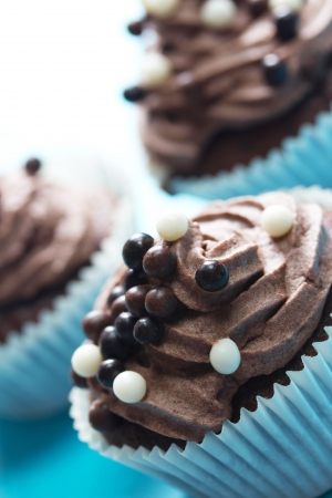 chocolate cupcakes  Stock Photo - 16767492